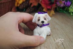 matilda04 (Zhanna Zolotina) Tags: teddy bear ooak dog miniature handmade blythe barbie tinydolhousetoyzz toyzz altair dollhouse puppenhaus