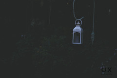 White Street Lamp (UX Photography) Tags: lamp white magical shot landscape unreal