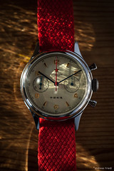 SEAGULL 1963 (andreasfriedl) Tags: seagull 1963 watch wrist andreas friedl