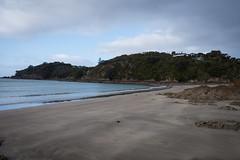 Waiheke Island-3-2