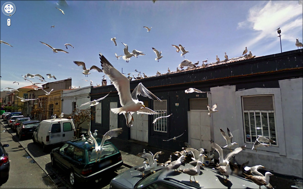 street view finds part 2 2