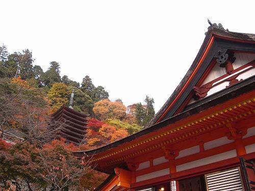 奈良を代表する紅葉の名所『談山神社』@桜井市多武峰
