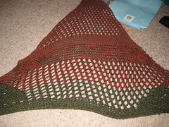 Lucy's Shawl