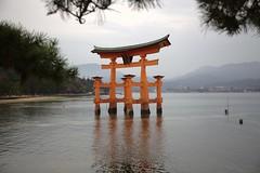 itsukushima at low tide