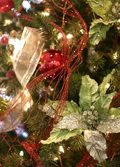 Glitter and Sparkle (:KayEllen) Tags: christmas trees red up glitter close sparkle greengold decorting