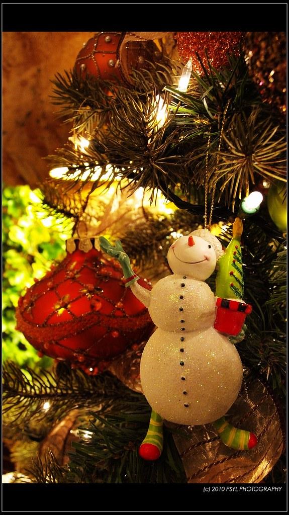 Like My Christmas Tree?