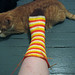 harvest candy corn sock