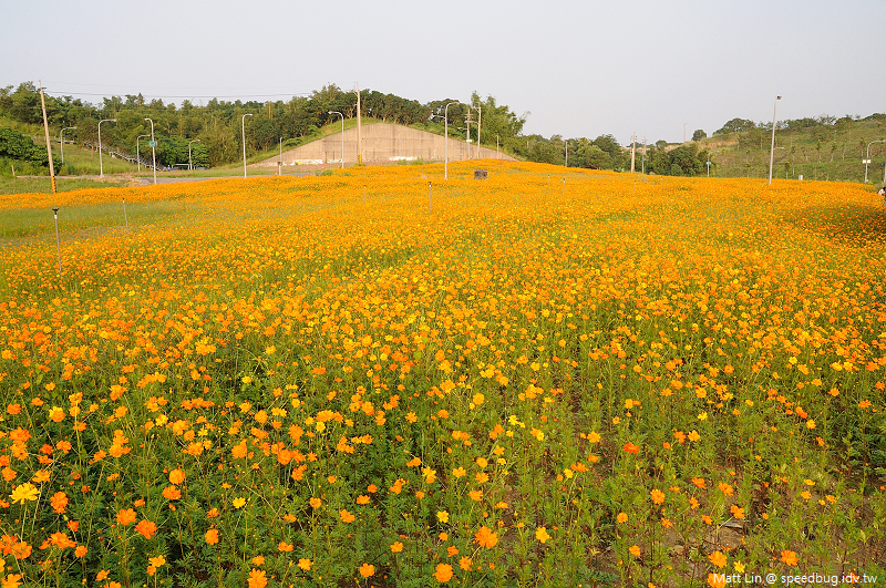 孔宅綠園 (21).jpg