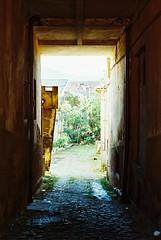 color film analog iso100 alley olympus alleyway zuiko om2 braga solaris beco ferrania om2sp mpires miguelpiresdarosa