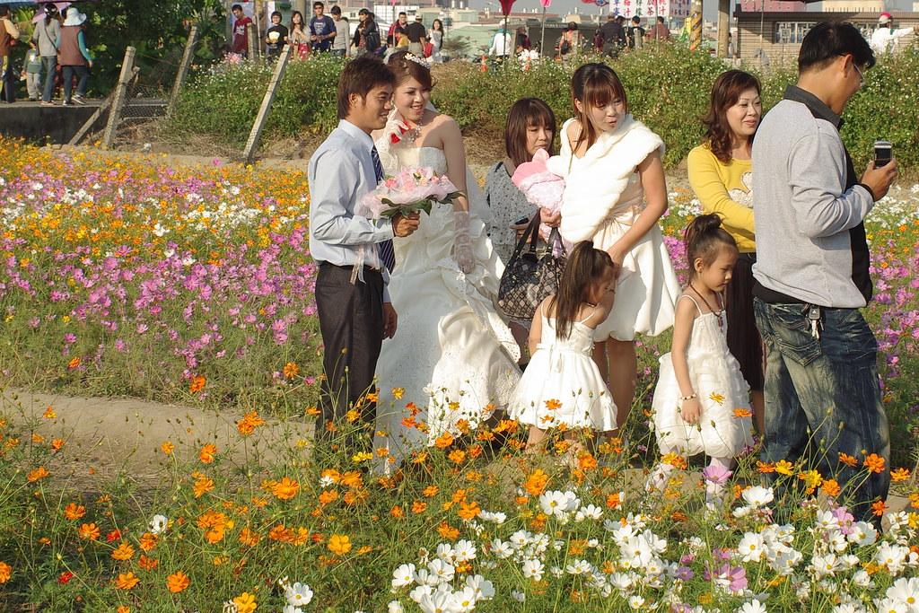 [請評圖]橋頭2010花田喜事~習拍