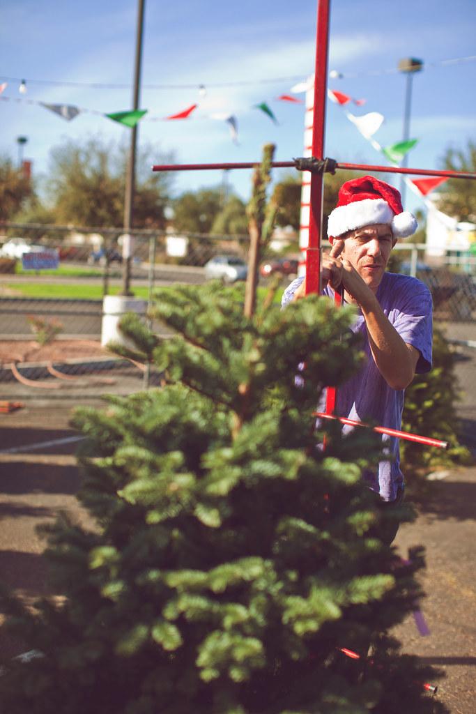 ChristmasTree2010-18
