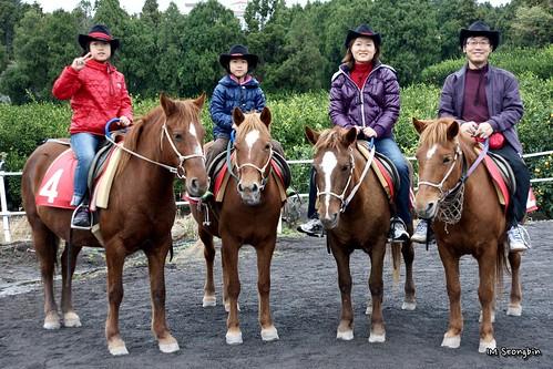 Horse-Riding (승마)