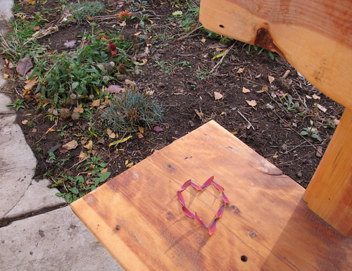 Fall Nature Art on the bench 8
