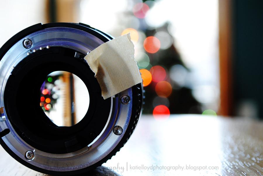 Tree-in-lens-2