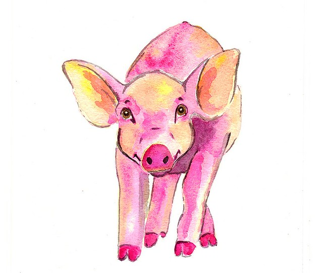 kroliki art pig