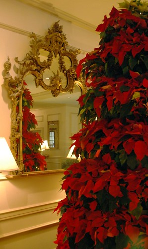 Pointsettia Tree & Mirror