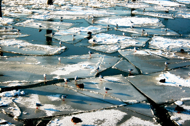 Elbe bei Eis