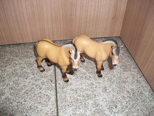 New arrivals in my herd! 5283185070_7a0949ee66_z