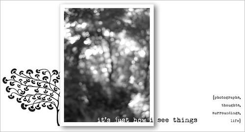 blog banner {fall 2010}