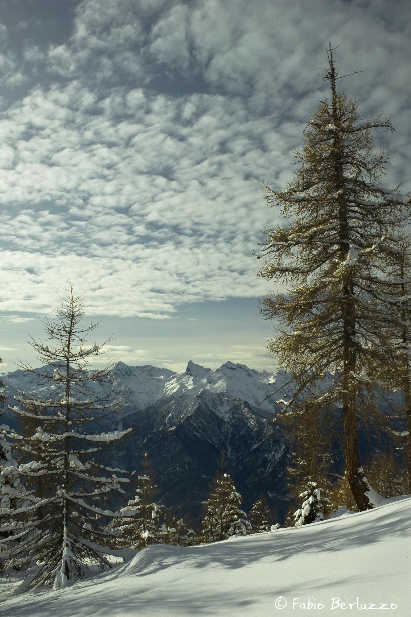Il Mont Avic punge il cielo (salendo a Testa di Comagna)
