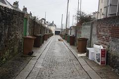 Keyham Lane (lazy south's travels) Tags: road uk england box britain plymouth cobbled bin devon lane rubbish service waste cobbles wheelie