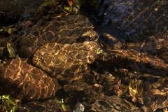 Desenhos naturais (Mrcia_) Tags: light sun luz sol nature water paran gua stones natureza nophotoshop runningwater pedras iluminao camposgerais crrego semphotoshop duetos jaguariava