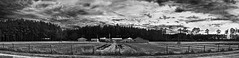 Southern Living (Jeff Briggs Photography) Tags: county trees sky bw panorama white black jeff barn ga georgia nikon farm south country scenic panoramic nikkor briggs ware waycross 2880 d80 3356g