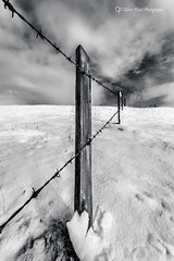 Prestbury Hill (Oliver Wood Photography) Tags: snow monochrome composition gold cheshire graphic barbedwire strong blackdiamond toner prestbury flickraward