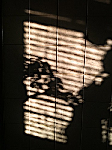 January Shadows