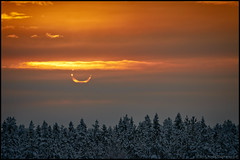 Eclipse (Jonas Thomn) Tags: winter sun moon cold sol forest solar eclipse vinter skog 80 kallt solfrmrkelse frmrkelse