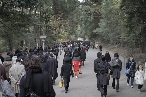 People heading to Meiji Shrine