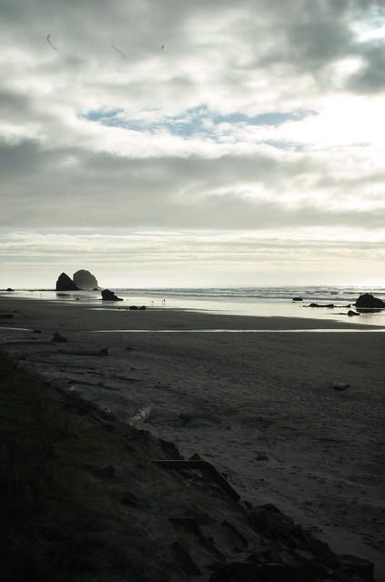 nikon coast