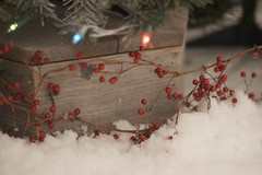 Leftover (Mel VDL Photography) Tags: christmas red tree lights raw berries naturallight christmaslights coloredlights fakesnow achristmaspartyintexas