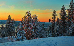 Where the Eagles Fly (Deby Dixon) Tags: city winter sunset snow nature composite photography frozen nikon colorful eagle wildlife idaho viewpoint deby coeurdalene goldenhour allrightsreserved naturephotography redglow lakecoeurdalene 2011 animaltrails debydixon debydixonphotography