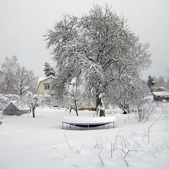 A Winter Garden (Steffe) Tags: winter house snow canon sweden trampoline tungelsta haninge squared fornminnesvgen winterinsweden