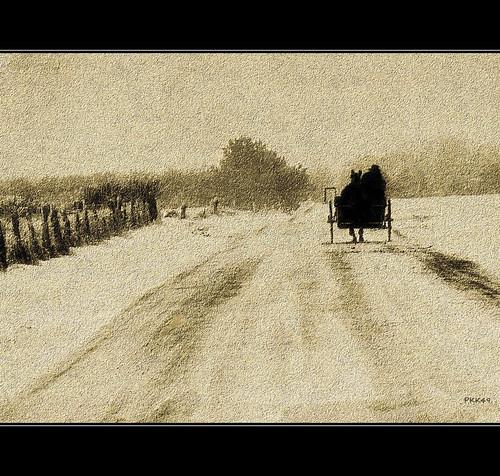 The Lone Traveler