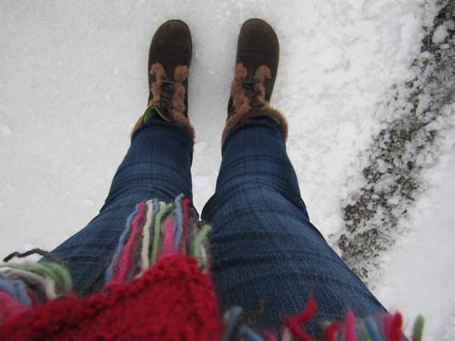 snowday11 018