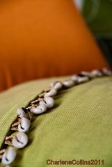 Avalon: Cowrie Shells (11/365) (Charlene Collins.still charlene) Tags: jamaica cushion luxury avalon portantonio 2011inpictures