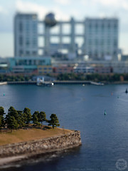 Tokyo Tilt Shift: Toy Trees and Fuji TV Building, Odaiba (Alfie | Japanorama) Tags: trees tree water architecture mediumformat tokyo evening bay bokeh fort arrows odaiba bellows tokyobay fujitelevision fujitv kenzotange tiltshift mamiya645afd fujitvbuilding mediumformatdigital mamiyazdback mamiyaautobellows kodak127mmektarf47