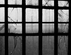 San Francisco Bay Bridge from Alcatraz Prison (sam_cooper) Tags: california bridge delete10 delete9 delete5 delete2 bay san francisco delete6 delete7 delete8 delete3 delete delete4 save prison alcatraz delete11 deletedbydeletemeuncensored