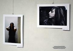 14 Ianuarie 2011 » Marionete