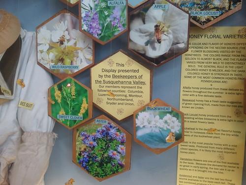 Honey Bee Display at Farm Show