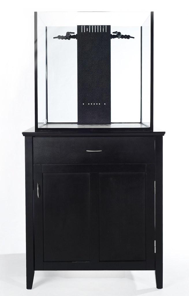 SolanaXL 60 Gallon Rimless Aquarium and Black Stand
