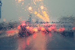 {5/15}     ..   (- M7D . S h R a T y) Tags: winter cold color london colors rain drops bokeh drop doha 515 wordsbyme valentinesdayproject allrightsreserved