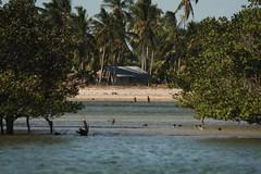 Mozambique-4442