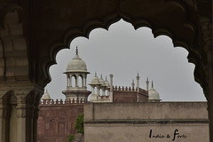 _NKN6111 (j1020) Tags: india delhi arga tajmahal redfort argafort