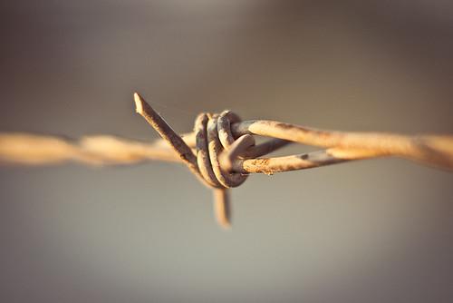 Nudo de hierro