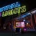 Festival of Lights 2010 ...