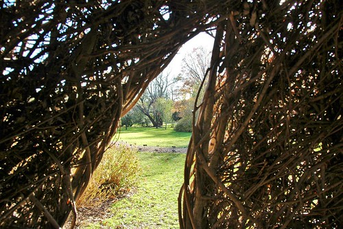 Natural History, Patrick Dougherty at Brooklyn Botanic Garden