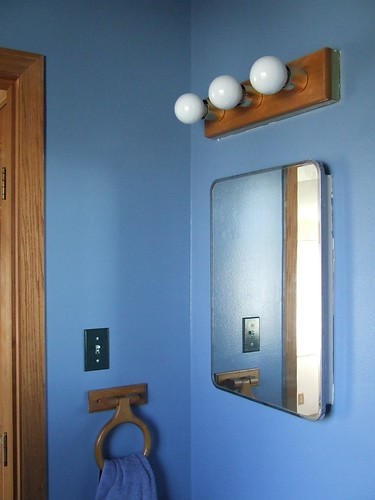 Cat Bathroom Painted Blue